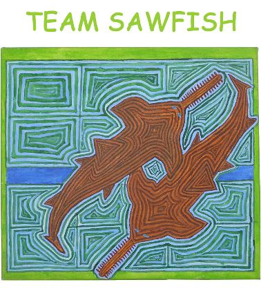 http://www.freshwaterfishgroup.com/team-sawfish.php